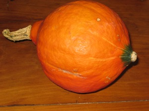 John's Japanese pumpkin. Isn't it beautiful?