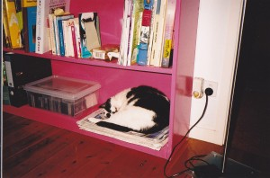 Pusska liked to keep some books handy, just in case she couldn't sleep.
